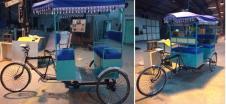 Pedal Assisted High Power E-rickshaw